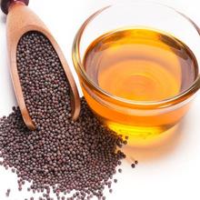 100-Natural-Jatropha-Seed-Oil-Turkish-Origin.jpg_220x220